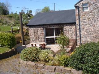 3 bedroom Cottage with Internet Access in Boyle - Boyle vacation rentals
