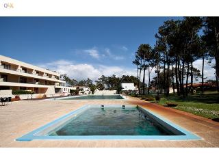 Beachside apartment in Esmoriz - Esmoriz vacation rentals