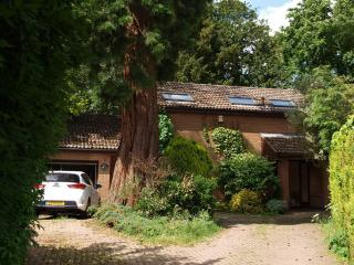 Nice House with Internet Access and Satellite Or Cable TV - Cottesmore vacation rentals