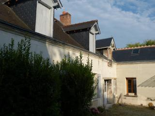 Nice House with Satellite Or Cable TV and Grill - Azay-sur-Cher vacation rentals