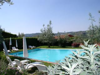 Terre di Melazzano -Apt Elisa - Greve in Chianti vacation rentals