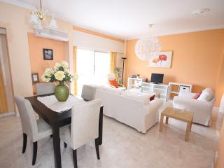 Homey + Comfy 2 BR , WI-FI , near Hilton hotel - Nicosia vacation rentals