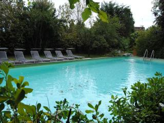 VILLA with private pool near Venice max 11 people - Conegliano vacation rentals