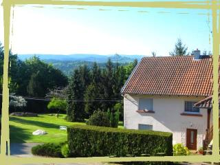 Nice Gite with Internet Access and Satellite Or Cable TV - Dabo vacation rentals
