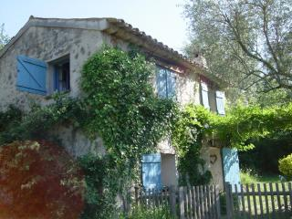 Nice 1 bedroom Le Bar-sur-Loup Cottage with Internet Access - Le Bar-sur-Loup vacation rentals