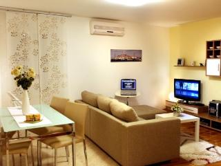 Nice Condo with Internet Access and A/C - Rovinj vacation rentals