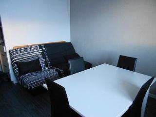 Apartment T2 Les Deux Alpes 4-5 people - Oz en Oisans vacation rentals