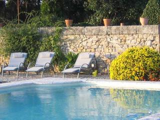 South France holiday rental with pool on vineyard - Montagnac vacation rentals