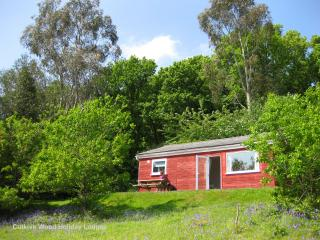 2 bedroom Lodge with Internet Access in Liskeard - Liskeard vacation rentals