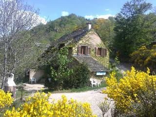 Nice Gite with Internet Access and Satellite Or Cable TV - Le Pont-de-Montvert vacation rentals