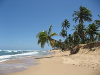 Paribahia 5* - Praia do Forte vacation rentals