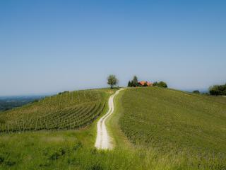 Holiday house Podhamer, apartment, break, accommodation, Ljutomer, Slovenia - Ljutomer vacation rentals