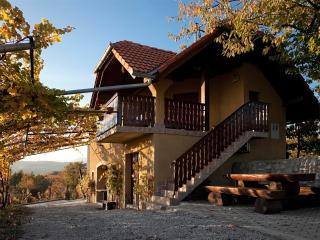 Vineyard cottage - Zidanica Brodaric - Metlika vacation rentals