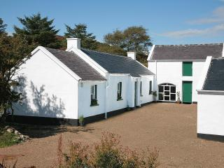 2 bedroom Cottage with Television in Newry - Newry vacation rentals