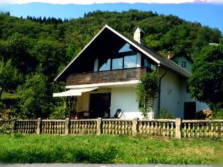 Apartment with nature in your hand*** - Bohinjska Bela vacation rentals