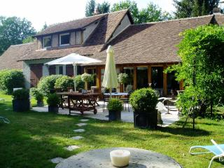maison de caractère en sologne - Saint Viatre vacation rentals