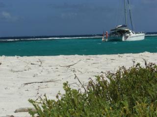 Croisieres Grenadines Caraibes  voiliers catamaran - Sainte-Luce vacation rentals