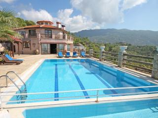 Unique villa in Islamlar with big special pool - Islamlar vacation rentals