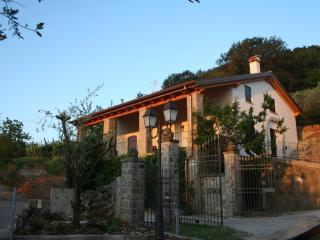Dimora nei Colli Euganei - Arqua Petrarca vacation rentals