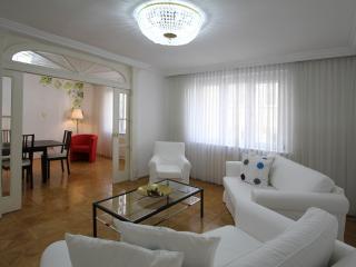 TOP LOCATION VIENNA ROTENTURM - Vienna vacation rentals