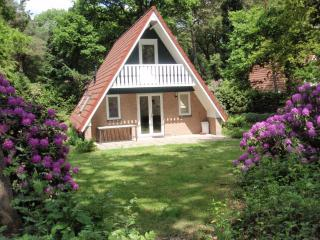 Lovely 3 bedroom Harfsen Cottage with Internet Access - Harfsen vacation rentals