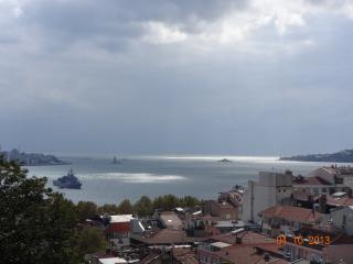 BOSPHORUS VIEW SUNLIGHT - Istanbul vacation rentals