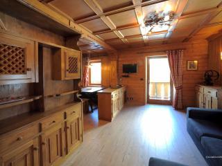 Comfortable 2 bedroom Condo in Borca di Cadore - Borca di Cadore vacation rentals