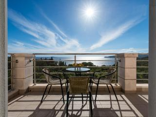 Beautiful 1 bedroom Plat Apartment with Internet Access - Plat vacation rentals