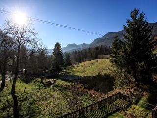 Beautiful 2 bedroom Vacation Rental in Bohinjska Bela - Bohinjska Bela vacation rentals