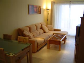 Comfortable Condo with A/C and Garage - Monforte del Cid vacation rentals