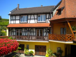 Nice Condo with Internet Access and Central Heating - Itterswiller vacation rentals