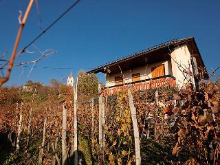 Vineyard cottage - Zidanica Kambic - Metlika vacation rentals