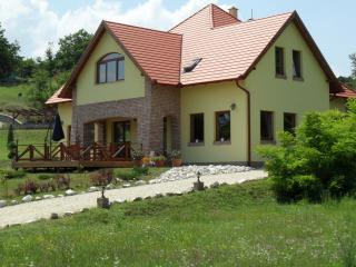 Villa Vinea, close to Budapest - Budapest vacation rentals