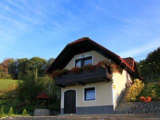 Vineyard cottage - Zidanica Krivic - Trebelno vacation rentals