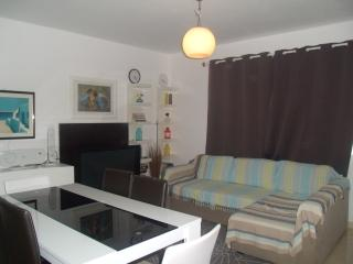 Nice Condo with Television and DVD Player - Ribeira Grande vacation rentals