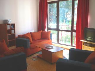 Our Bulgarian Ski Holiday Home - Borovets vacation rentals