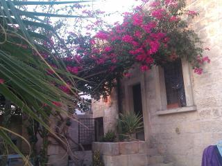 Casa al sole( Home in the sun) - Carpignano Salentino vacation rentals