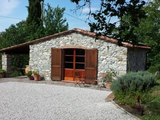 Bungalow to rent between Siena and Follonica - Montieri vacation rentals