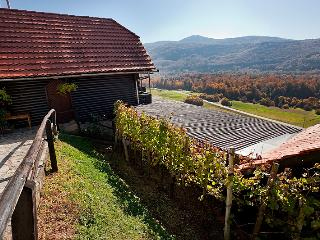 Vineyard cottage - Ludvikov hram - Dvor vacation rentals