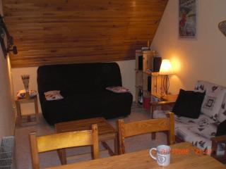 1 bedroom Condo with Balcony in La Ferriere - La Ferriere vacation rentals