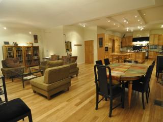 2 Fab lofts, Sleeps 2 - 16 - 3 stops to Wrigley - Chicago vacation rentals