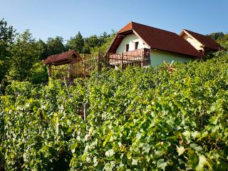 Vineyard cottage - Zidanica Lustek - Novo Mesto vacation rentals