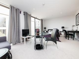 Central Cambridge Apartment - Cambridge vacation rentals