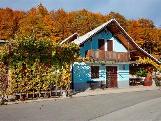 Vineyard cottage - Zidanica Meglic - Trebnje vacation rentals