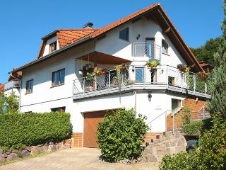 2 bedroom Apartment with Internet Access in Baden Wurttemberg - Baden Wurttemberg vacation rentals