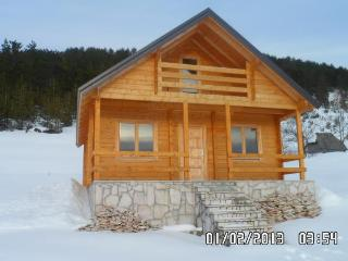 Nice Chalet with Satellite Or Cable TV and Television - Zabljak vacation rentals