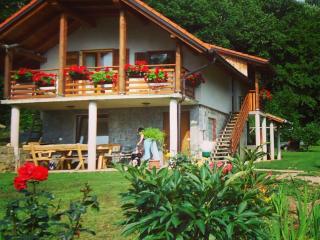 Vineyard cottage - Zidanica Planinc - Crnomelj vacation rentals
