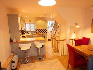 Lovely Kingswear vacation House with Dishwasher - Kingswear vacation rentals