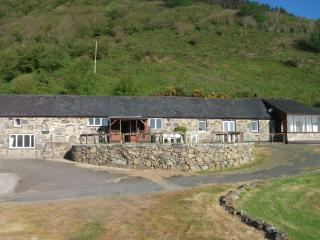 Bright 4 bedroom Barn in Rhiw with Internet Access - Rhiw vacation rentals