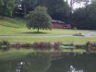 Beautiful Lodge with Internet Access and Dishwasher - Narberth vacation rentals
